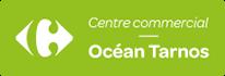 Centre Commercial Carrefour Tarnos