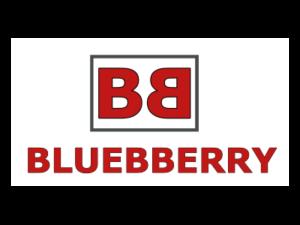Bluebberry